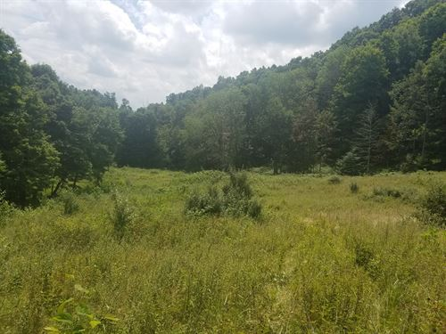 Land Great Potential North : North Tazewell : Tazewell County : Virginia