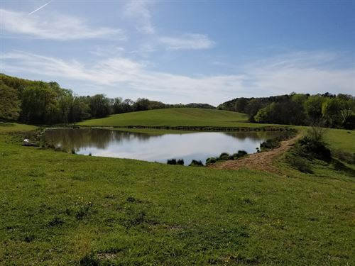 Rare Opportunity, Large Acreage : Ringgold : Pittsylvania County : Virginia