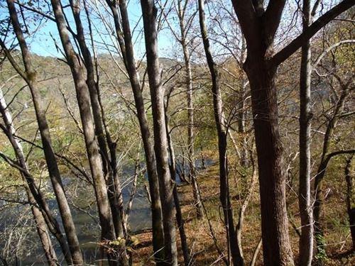 Acreage River Access Southwest : Saltville : Smyth County : Virginia