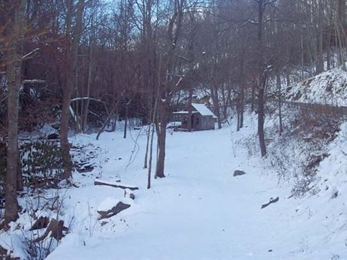 113 Acres Mountain Farm Grayson : Independence : Grayson County : Virginia