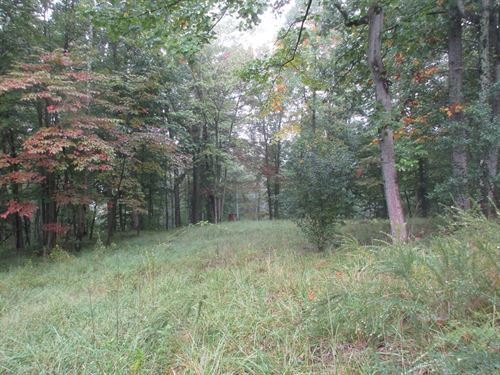 11.487 West Virginia Country : Ellenboro : Pleasants County : West Virginia
