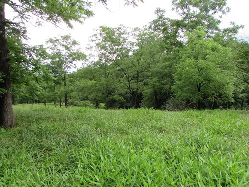 Large Tract Land in Ritchie County : Hazelgreen : Ritchie County : West Virginia