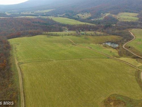 10.43 Acres Mountain Property : Paw Paw : Morgan County : West Virginia