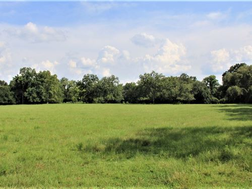 179 Acre Multi Purpose Farm : Clayhatchee : Dale County : Alabama