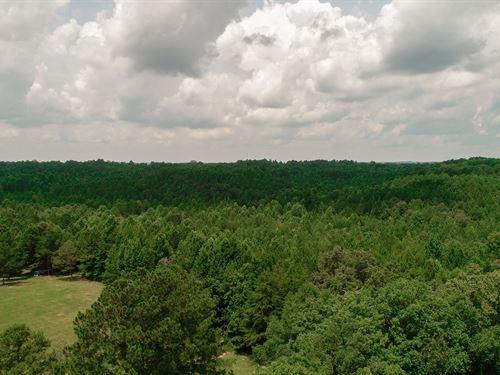 Timberland, Hunting, Recreational : Lynn : Winston County : Alabama