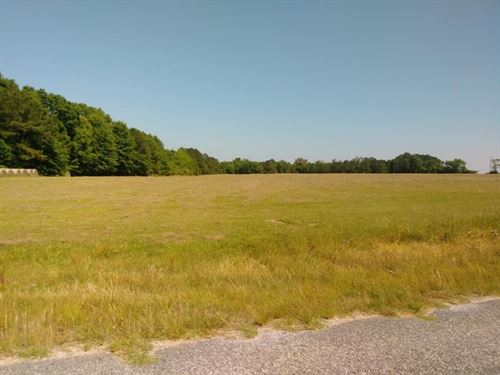 56 Acres In Dale County, Al : Midland City : Dale County : Alabama