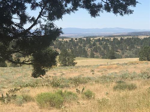 Modoc County CA Warner Mountain : Alturas : Modoc County : California