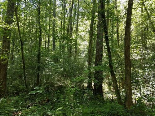 Acreage North Ga Mountains Gilmer : Ellijay : Gilmer County : Georgia