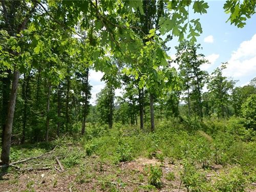 16.25 Acres, Talking Rock, GA : Talking Rock : Pickens County : Georgia