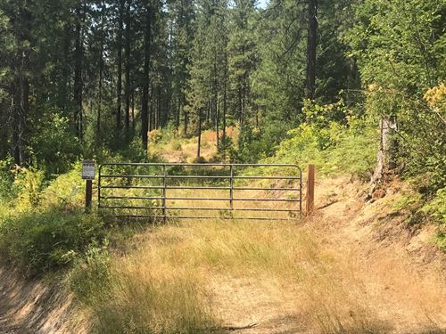 Idaho Acreage For Sale In Rose Lake : Rose Lake : Kootenai County : Idaho