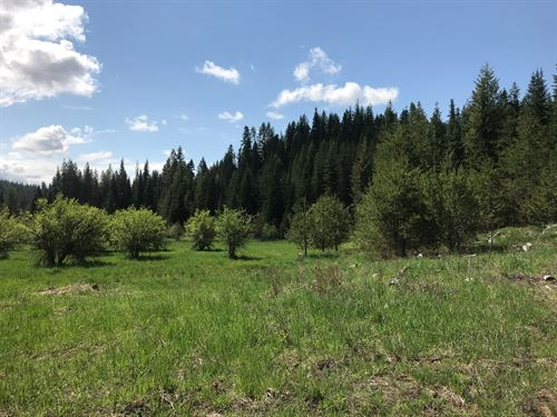 Over 90 Acres Land St, Maries : Saint Maries : Benewah County : Idaho