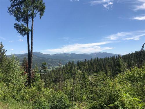 North Idaho Land Over 200 Acres St : Saint Maries : Benewah County : Idaho