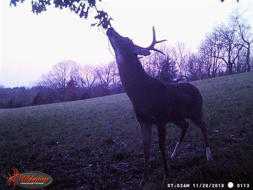 Hunting Land For Sale in Galena, IL : Galena : Jo Daviess County : Illinois