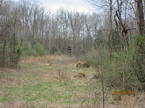 Hunting Property, Over 40 Acres : Cave-In-Rock : Hardin County : Illinois