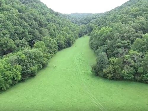 Large Acreage, Hunting, Home Sites : Burkesville : Cumberland County : Kentucky