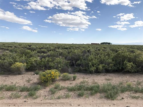 471 Acres Saguache County : Alamosa : Colorado