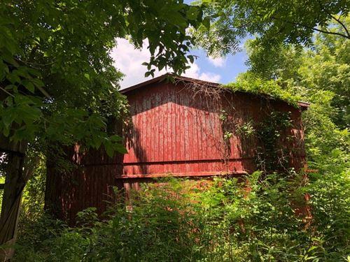 Barn, Acreage, Wooded, Wildlife : Edmonton : Metcalfe County : Kentucky