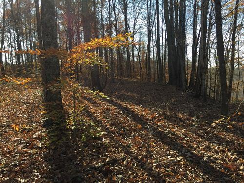 Price Reduced-Hunting-Hiking-Pond : Liberty : Casey County : Kentucky