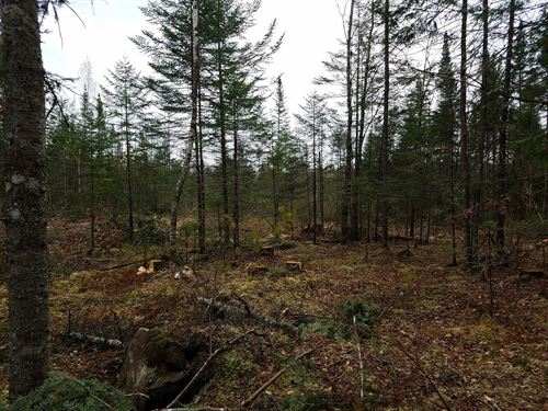Maine Land For Sale in Enfield : West Enfield : Penobscot County : Maine