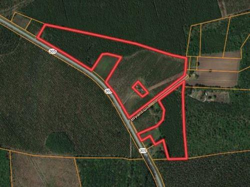 Hunting Land in Bertie County, NC : Aulander : Bertie County : North Carolina