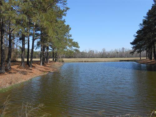 Farmland Beaufort County NC : Chocowinity : Beaufort County : North Carolina