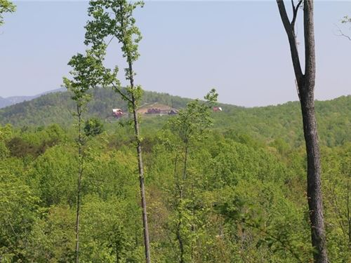 Land For Sale in Dobson NC : Dobson : Surry County : North Carolina