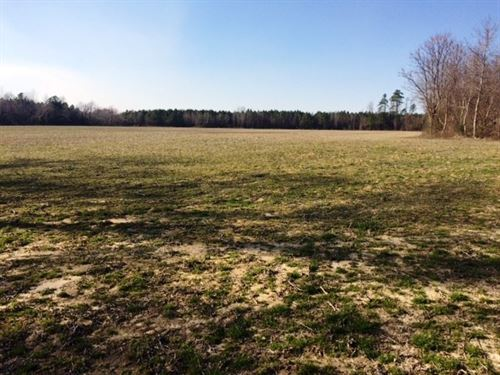 Farm Land, Crop Land, Hunting : Garland : Sampson County : North Carolina
