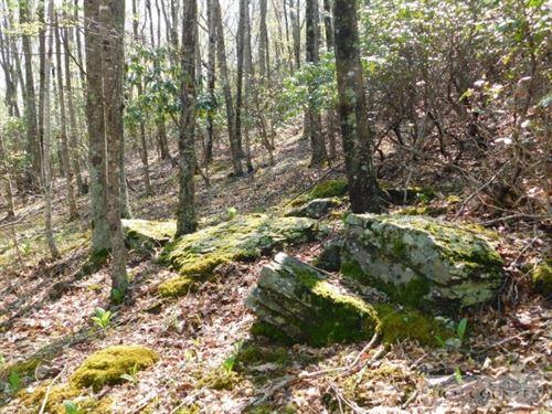 13+ Mountain Acres, Walk to Town : Sparta : Alleghany County : North Carolina