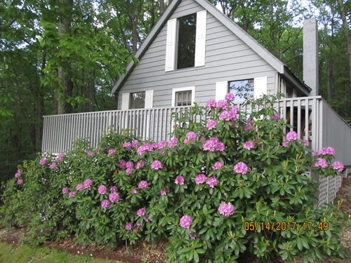 The Mountain Getaway, Cottage : Sparta : Alleghany County : North Carolina
