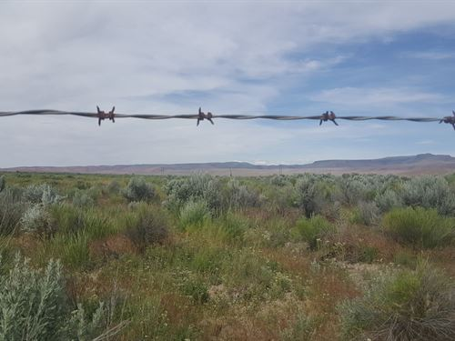1 Kelly Creek : Winnemucca : Humboldt County : Nevada