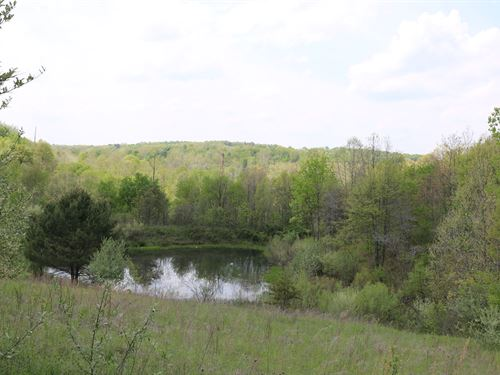 Vinton County, Ohio Acreage Small : Hamden : Vinton County : Ohio