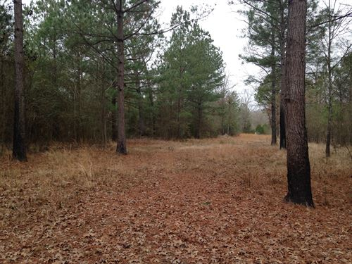 Land For Sale in Broken Bow, OK : Broken Bow : McCurtain County : Oklahoma