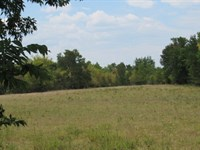 Cattle Equine Ranch in SE Oklahoma : Hugo : Choctaw County : Oklahoma