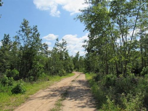 Prime Hunting Land Spencerville, OK : Spencerville : Choctaw County : Oklahoma