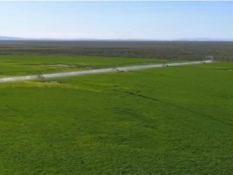 Organic Farm For Sale In Burns Or : Burns : Harney County : Oregon