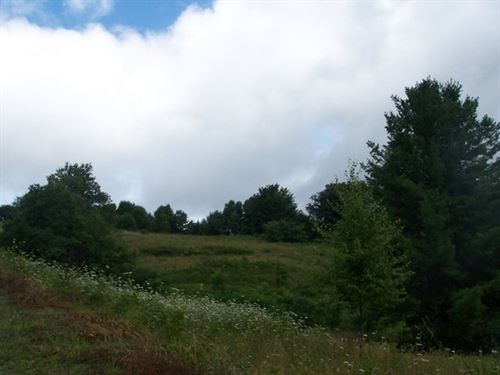 Acreage Near Appalachian Trail : Troutdale : Grayson County : Virginia