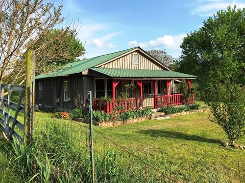 Cabin 18.93 Acres National Forest : Fifty-Six : Stone County : Arkansas