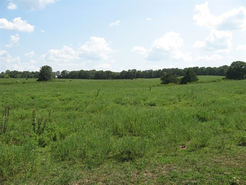Acreage Saint James Mo, Land Mo : Saint James : Phelps County : Missouri