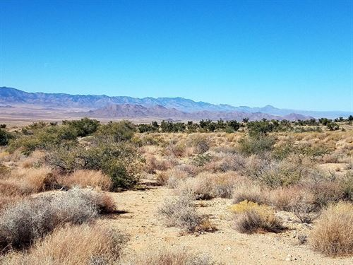 20 Acres In Dolan Springs, AZ : Dolan Springs : Mohave County : Arizona