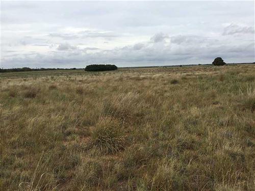 74 Acre Cypert Farm, Knox County : Knox City : Knox County : Texas