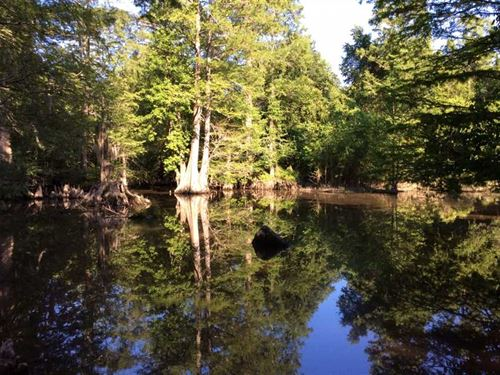 Castor Creek Tract, Caldwell Paris : Kelly : Caldwell Parish : Louisiana