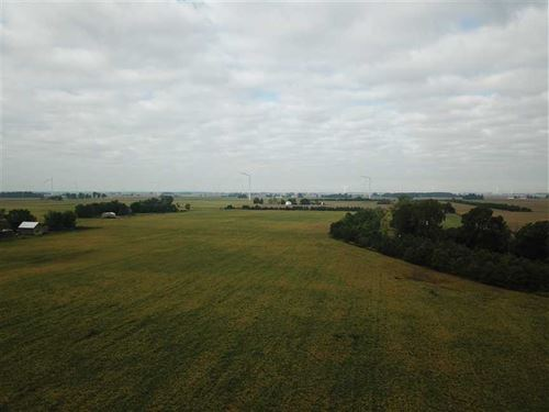 55 Acres of Farmland For Sale Elwo : Elwood : Madison County : Indiana