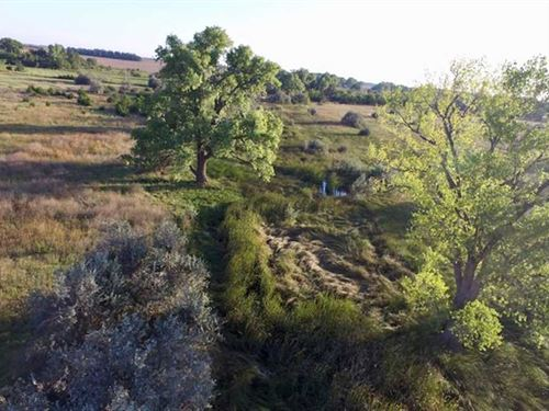 80 Acres of Farmland, Pasture : Stafford : Kansas