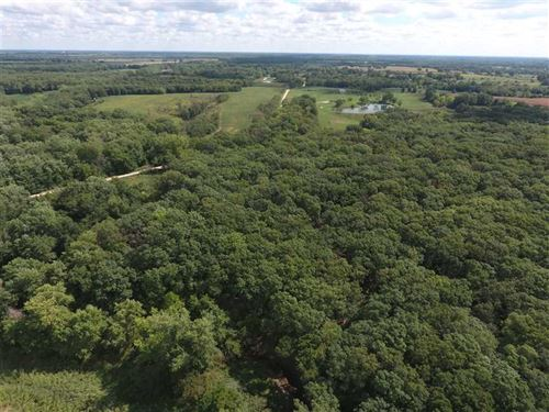 Great 43 Acre Hunting Tract in Liv : Hale : Livingston County : Missouri