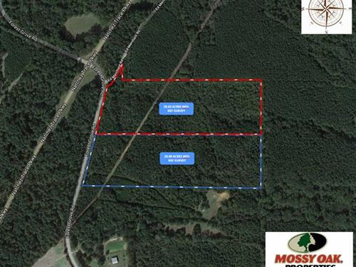 20.63 Acre Secluded, Surveyed, Cab : Carthage : Leake County : Mississippi