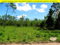 Large Clearing, Creek, Electric : Cabool : Texas County : Missouri