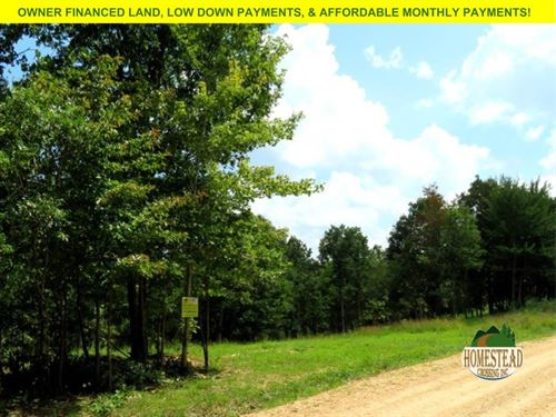 Nice Clearing, Hunting, Homestead : Summersville : Shannon County : Missouri