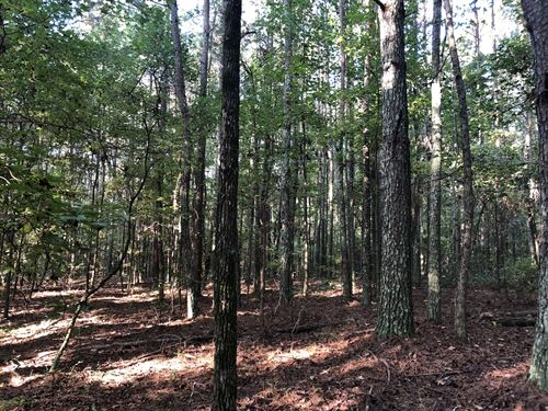 37.5+- Ac, Natural Pine & Hardwoods : Adairsville : Bartow County : Georgia