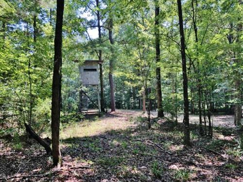 95.9 Acres Hardwood Timber Land : Meadville : Franklin County : Mississippi