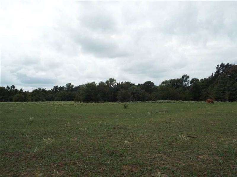 Recreational Hunting Pasture Acrea : Boswell : Choctaw County : Oklahoma